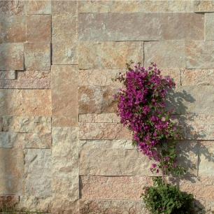 Muro: Scorza